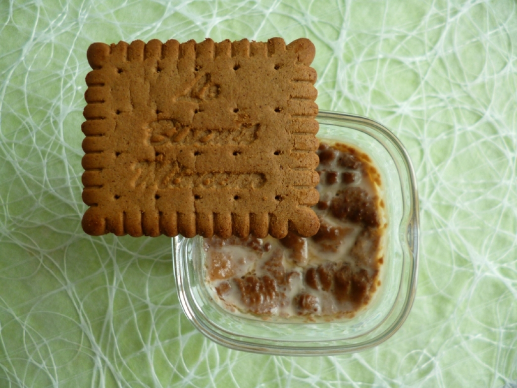 Recette yaourts maison all g s aux biscuits speculoos minceur di t tiques et prot in s 80 kcal - Recette biscuit sans sucre ...