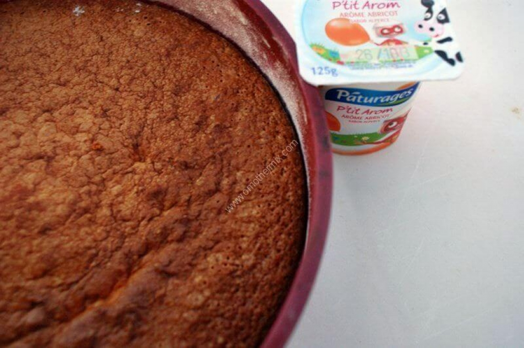 Recettes thermomix 2 - Gateau simple thermomix ...